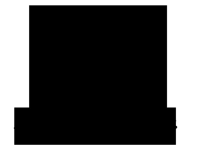 new-shondy-logo